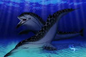 Extinct California Porpoise Discovered In San Diego Had A...