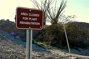 Environmentalists Try To Limit Off-Road Vehicle Use At Oc...