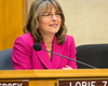 Zapf Wins; Cate, Kim Headed To Runoff In City Council Races
