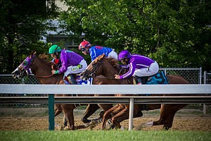 Tease photo for California Chrome's Next Race May Be At Del Mar