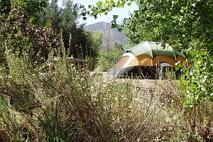 Tease photo for Mission Trails Campgrounds Reopen After Budget Cuts Restored