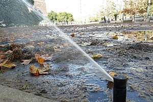 Tease photo for Enforcement Of Water Restrictions Varies Around State