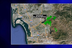 Tease photo for Hunting Proposed In Otay-Sweetwater National Wildlife Refuge
