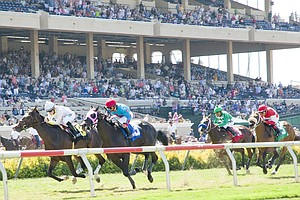 Tease photo for Del Mar Makes Changes To Turf Track After Horse Deaths