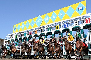 Tease photo for Horse Seriously Injured At Del Mar; Races On Turf Course Suspended