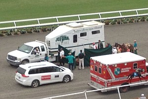 Tease photo for Horse Has Heart Attack, Dies During Race At Del Mar