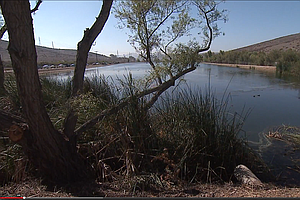 Effort Started To Get More Recycled Water From Padre Dam