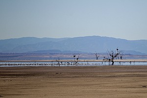 State Pressured To Take Action On Restoring Salton Sea