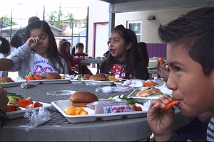 Tease photo for Farm To School Program Broadens Palates Of San Diego Students