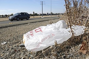 California Plastic Bag Ban May Soon Qualify For Ballot