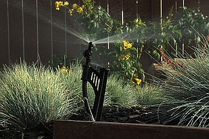 Tease photo for Officials Encourage San Diegans To Shut Off Sprinklers Because Of Recent Rain
