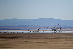 California Officials Set Modest Plans For Vanishing Salton Sea