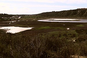 Tease photo for Batiquitos Lagoon Land To Be Preserved As Mitigation For Freeway Widening