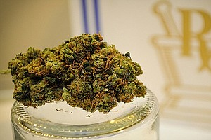 Judge In California Declines To Remove Marijuana From Dan...