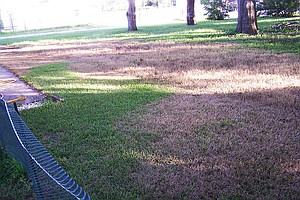 California Bill Would End Fines For Brown Lawns In Drought