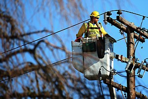 Fallen Tree Causes Power Outages In Carlsbad