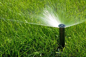 San Diego Tightens Water Restrictions To Meet State Conse...