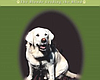 Tease photo for A Guide Dog Not Only Led The Way — He...
