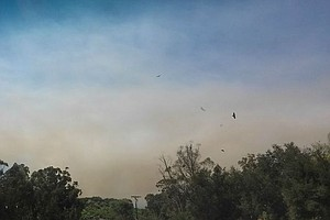 Brush Fire In Fallbrook Fully Contained