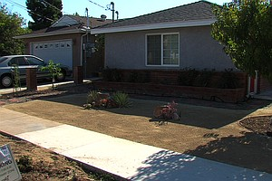 San Diego Resident Says Turf Rebate Program Was A Breeze