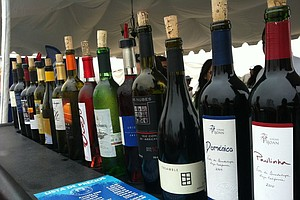 Up Your Wine Game: San Diego Enthusiasts Drop Knowledge