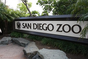 Tourism Officials Launch 'Kids Free San Diego' Promotion