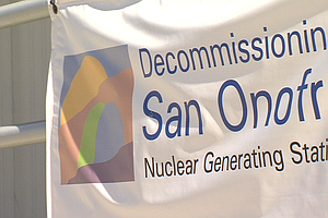 Tease photo for Group Questions San Onofre's Decommissioning Fund