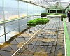 Aquaponics Farm To Triple In Size, Quadruple Homeless Funding