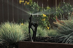 Water Conservation Down In San Diego County
