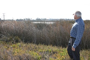 Buena Vista Audubon Society Buys Wetlands Next To Lagoon