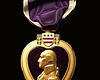 Tease photo for San Diego Family To Receive Great-Uncle's Lost Purple Heart