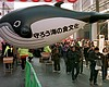 Tease photo for SeaWorld Urges US Government To Help Stop Japanese Whaling