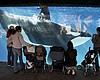Tease photo for Scientists Bemoan SeaWorld Decision To Stop Breeding Orcas