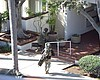 Tease photo for Gunman In Bankers Hill Standoff To Stand Trial