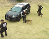 Tease photo for Watch: San Diego Police Show Off '90s...