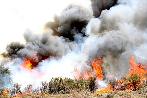 Crews Move Quickly To Put Out Fire In Volcan Mountain Area