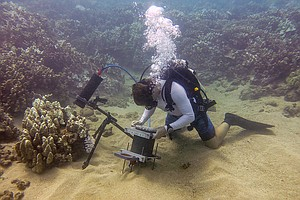 San Diego Scientists Take Coral Reef Close-Ups With New U...