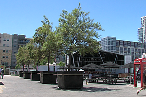 Will Urban Park In Downtown San Diego Get The Boot?