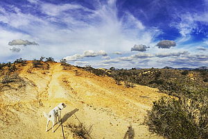 TheNAT Offers New San Diego Hiking Guide