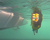 Swarm Of Robot 'Minions' Helps San Diego Scientists Study Complex O...