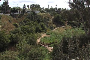 A Dose Of Nature Comes To One Of San Diego's Densest Neighborhoods