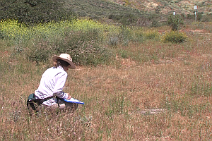 Delicate Vernal Pools Restored In San Diego County