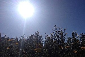 Warmer Temperatures Moving Into San Diego County