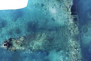 San Diego Researchers Find Missing World War II Bomber Of...
