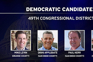 Democrats Split Over Endorsements In Race For Issa's Congressional Seat