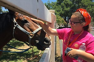 Military Kids Comforted By Rescued Horses In Ramona