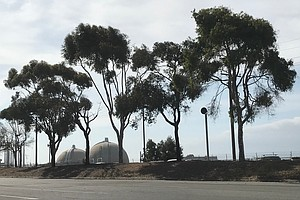 NRC Questions SoCal Edison Over Corrective Actions At San Onofre Power Plant