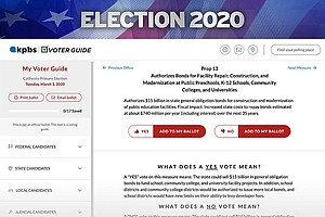 Election 2020: How To Use The KPBS Voter Guide