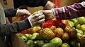 Food Assistance Groups Upping Their Game To Aid San Diegans In Need