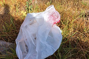Plastic Bags Are Banned Again In California, But They're Still Here